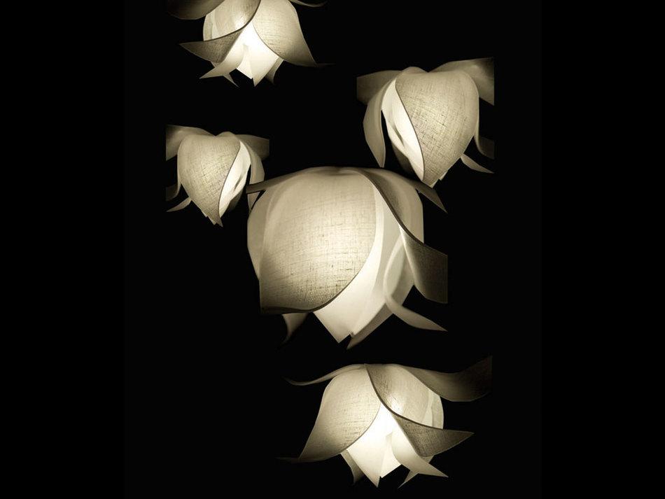 Blossom Pendant Light From 3form