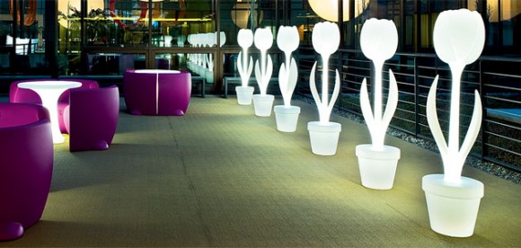 tulip polyethylene lights