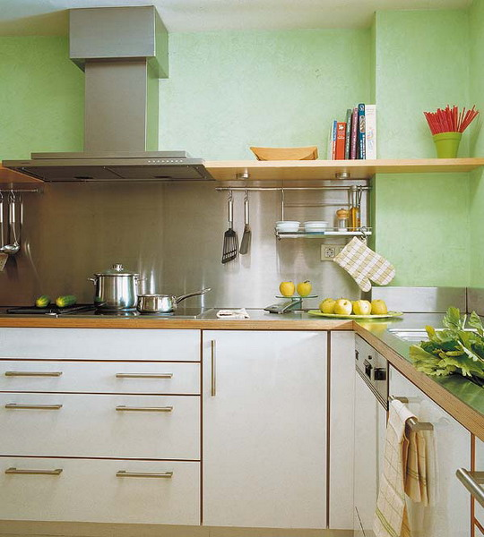 high tech kitchen in the eco tone