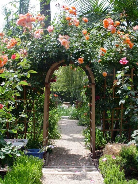 Choosing Roses For The Garden And Exteriors Interior