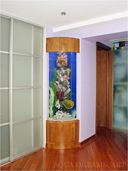 aquarium for the bedroom
