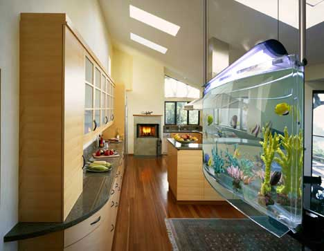 Ideas for Aquarium in the Modern Home and Office