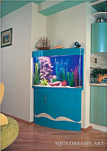 aquarium for the kitchen