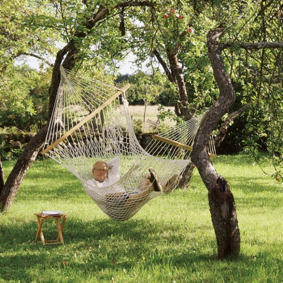 hammock for the outdoor