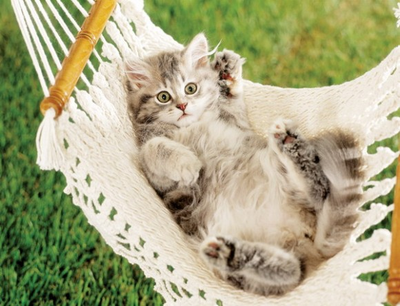 stylish woven hammocks 01
