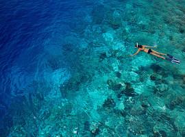 dusit thani resort maldives 05