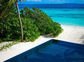 dusit thani resort maldives 13