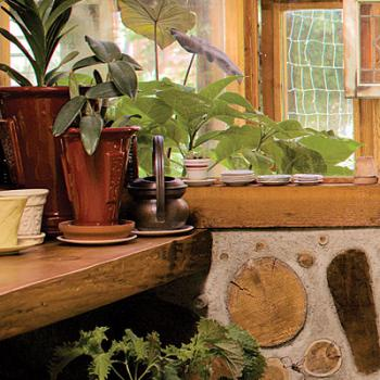 eco style ideas potted plants 01