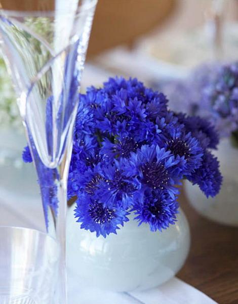 blue flowers creative ideas 01