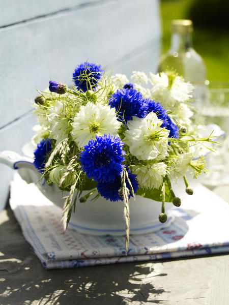 blue flowers creative ideas 09