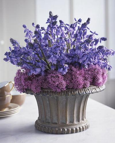 blue flowers creative ideas 14