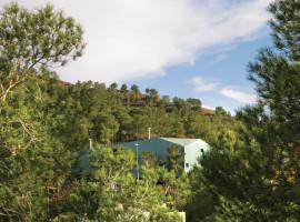 house among pines 01