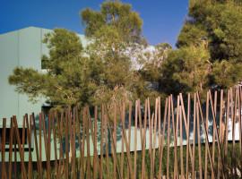 house among pines 03