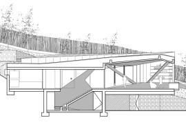house among pines 23