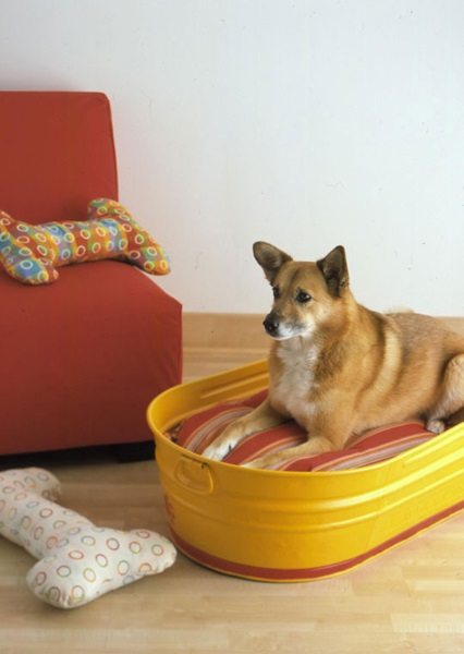 furniture for pets 06