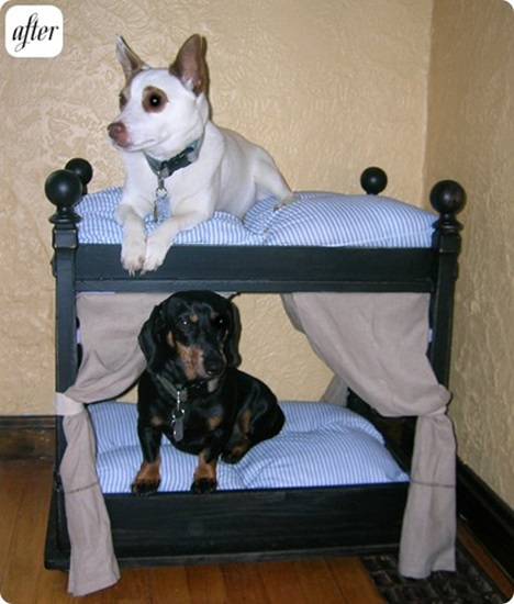 furniture for pets 08