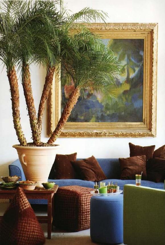 house plant ideas 10