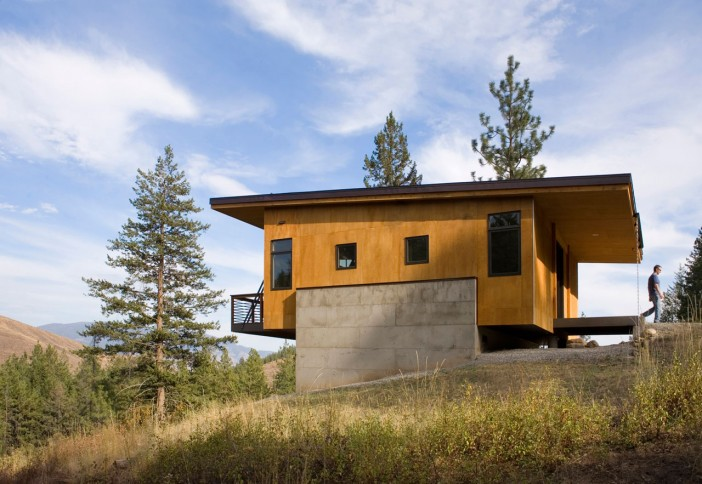 pine forest cabin 02
