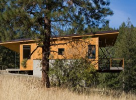 pine forest cabin 03