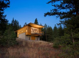 pine forest cabin 12