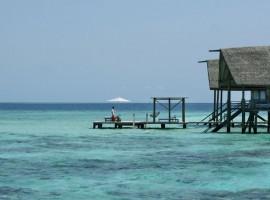 cocoa island 11