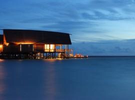 cocoa island 12