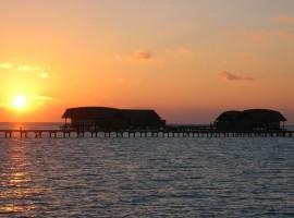 cocoa island 13