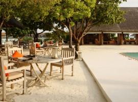 cocoa island 24