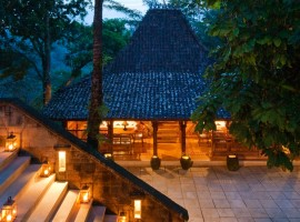 como shambhala resort 21