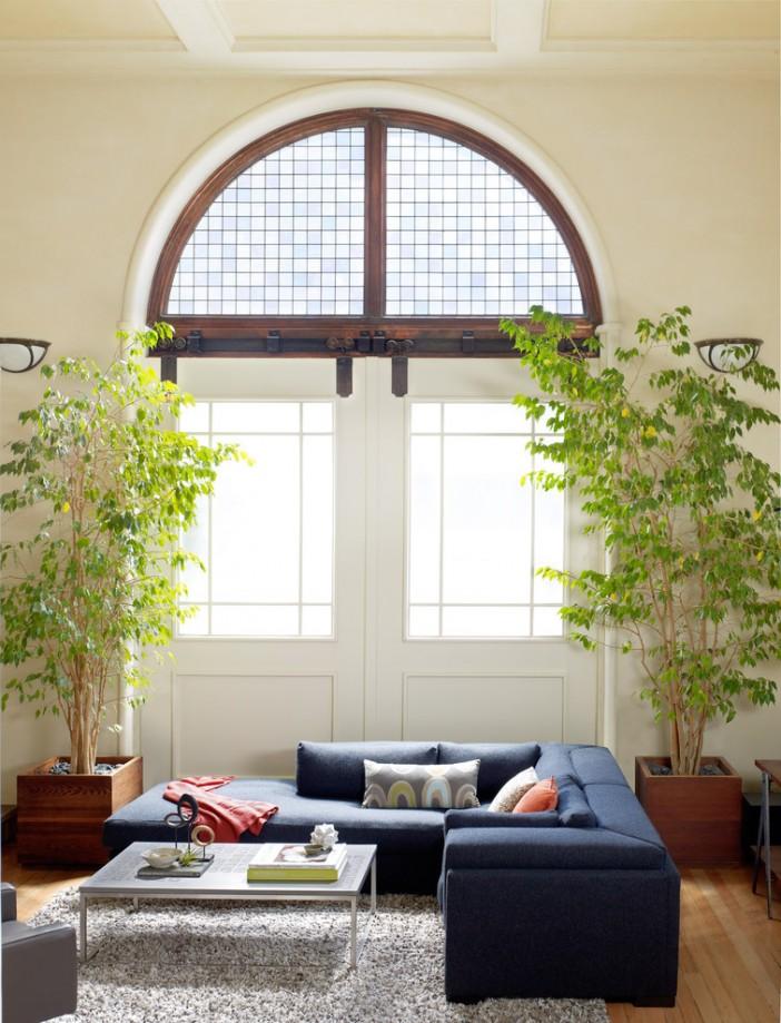design ideas get large plants
