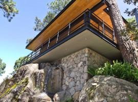 the forest pavilion 03