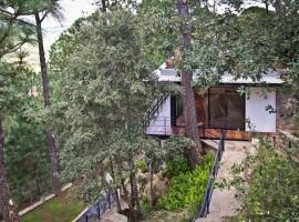 the forest pavilion 07