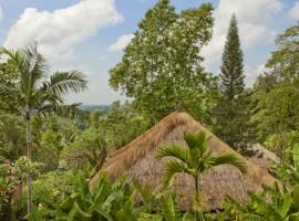 uma ubud resort in the majestic bali 02