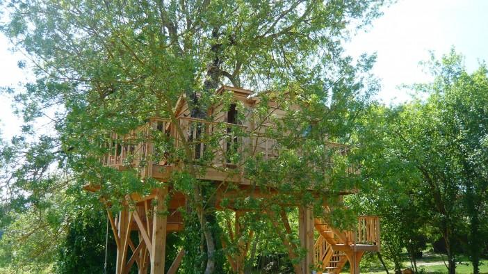 exterior design of cabane et spa tree house 02