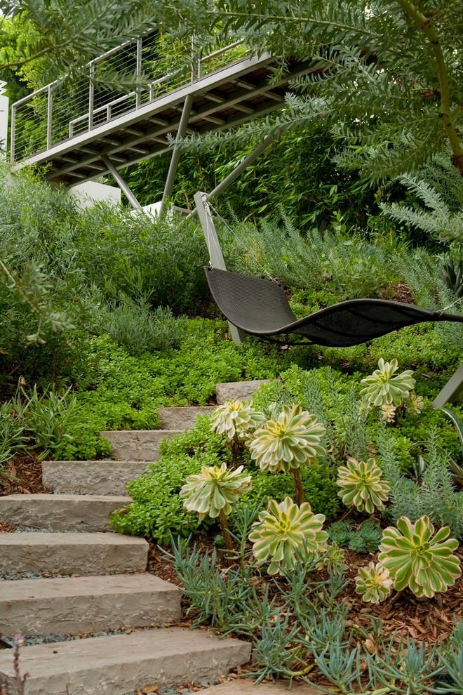 pasadena contemporary landscape hammock