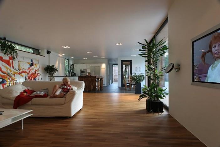 Bergman-Werntoft-House-30-750x500