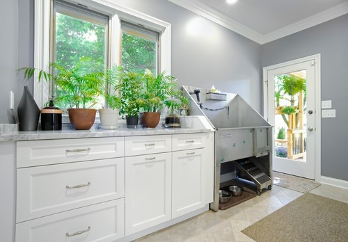 Designing a Pet Washing Station at Home | Interior Design Ideas and on home dog bar, home dog toilet, home dog bath, home hot tub, home gym, home dog mom,