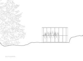 Williams-Studio-26-800x618