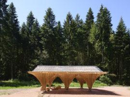 Préau / Bertrichamps / Christophe Aubertin / Studio LADA Arch.