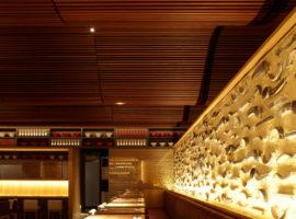 Koichi-Takada-Architects_IPPUDO_Image-04-of-08_(1)