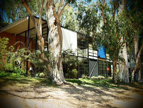 modern-exterior (5)