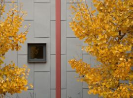 berkeley-courtyard-house-00-2-1-750x500